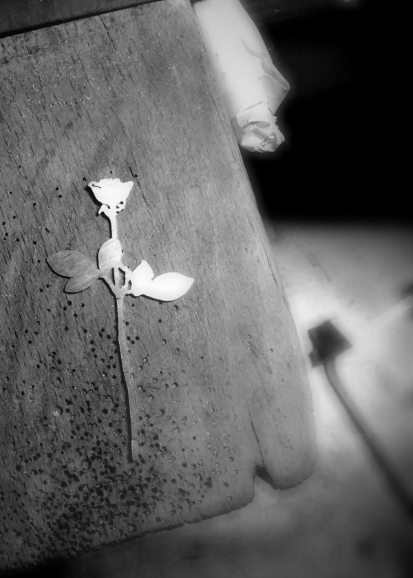enjoy the silence silver rose mono earring