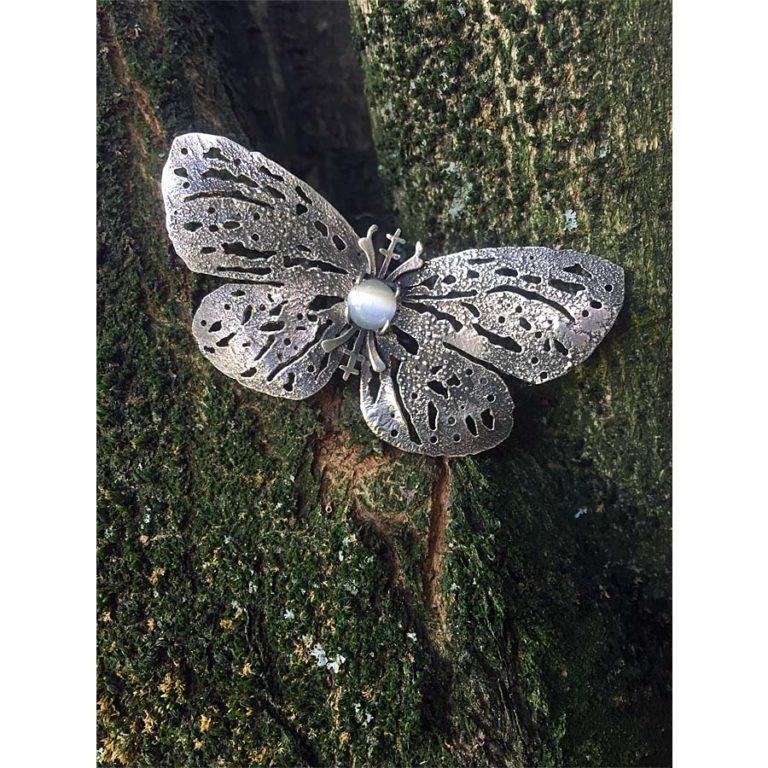 nocturna papillon tronco verede