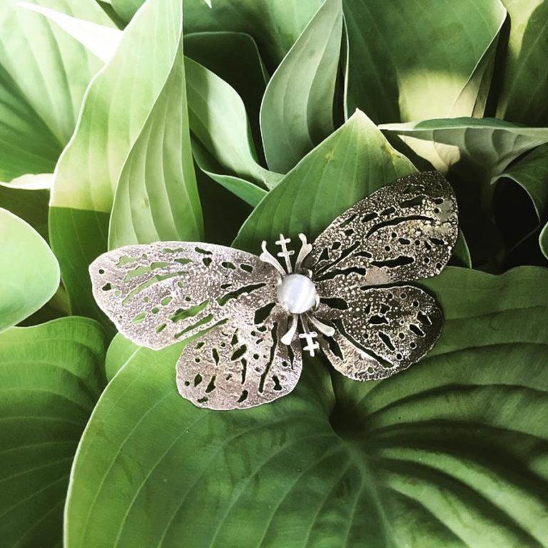 nocturna papillon